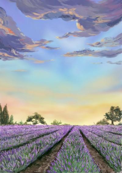 The Lavender Farm v2 | One2three | Digital Drawing | PENUP