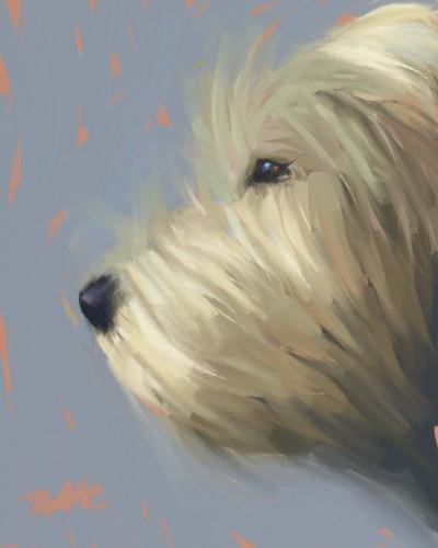 puppy    zak   Digital Drawing   PENUP