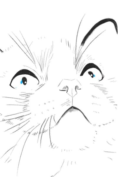 냐옹 | suyun | Digital Drawing | PENUP