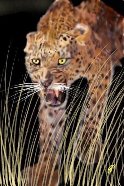 Annoyed Leopard  | Rebecca | Digital Drawing | PENUP