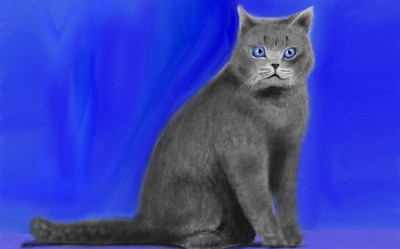 Moses the Cat | C.C.D.duhArtiz | Digital Drawing | PENUP