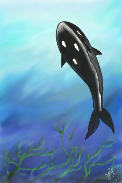 Lost Whale   frannyme   Digital Drawing   PENUP
