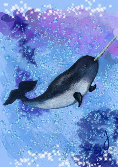 Narwhal (drawing practice/learning medibang) | souliliquy | Digital Drawing | PENUP