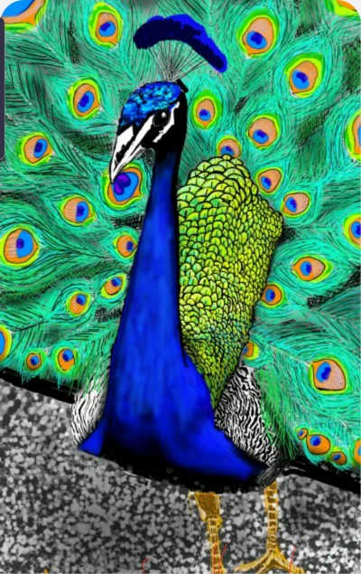 shake your feather tail | Lor-Van | Digital Drawing | PENUP