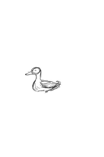 Animal Digital Drawing | Ivylisse | PENUP