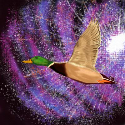 Pato da galáxia    JeronimoMailson   Digital Drawing   PENUP