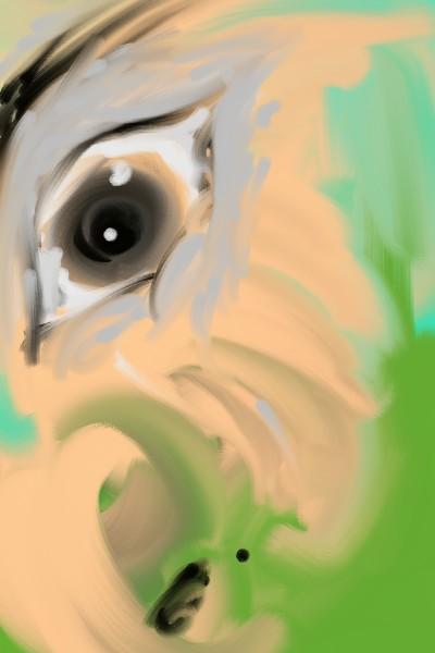 eye   pio   Digital Drawing   PENUP