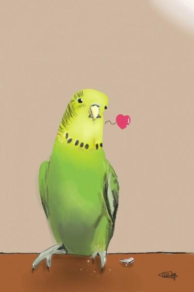귀여운 앵무새♡ Cutey Parrot♡ (Drawing by my sister) | yisky | Digital Drawing | PENUP
