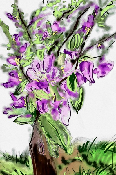 Flowers + filter | Barbra | Digital Drawing | PENUP