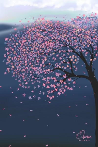 Original version cherry blossom  | Dexter | Digital Drawing | PENUP