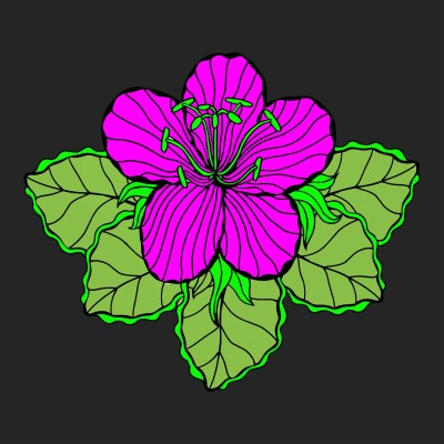 flower | Boomer | Digital Drawing | PENUP