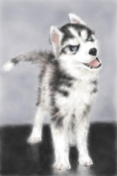 The Anti- Drug Dog | SmartStudio | Digital Drawing | PENUP