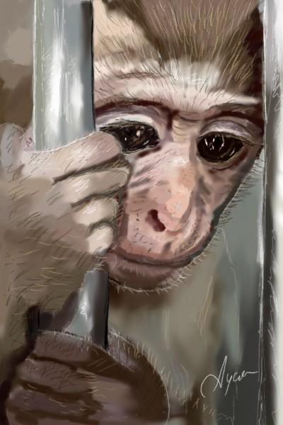 Little Prisoner of the Zoo | Ayca | Digital Drawing | PENUP