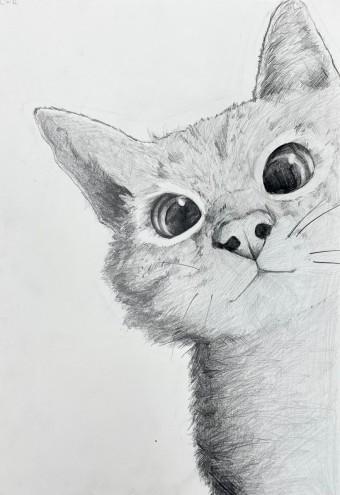 고양이(연필) | lizard__butler | Digital Drawing | PENUP
