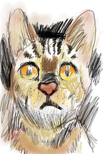 고양이 | lizard__butler | Digital Drawing | PENUP