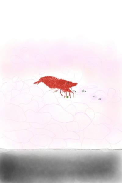 채리새우 | Jiyun | Digital Drawing | PENUP