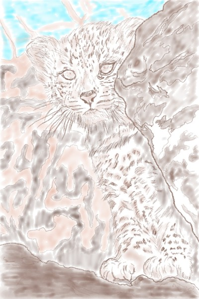 The Young Leopard  | reaganmacdavid | Digital Drawing | PENUP