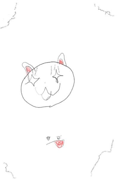 Animal Digital Drawing   candy_man   PENUP