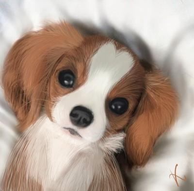 A cute puppy  | _H.A.P.P.I.E.E_ | Digital Drawing | PENUP